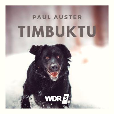 Paul Auster – Timbuktu
