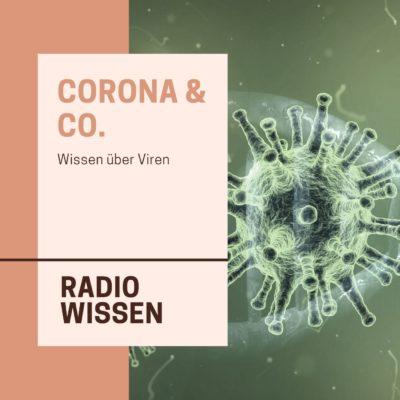 Corona & Co. – Wissen über Viren