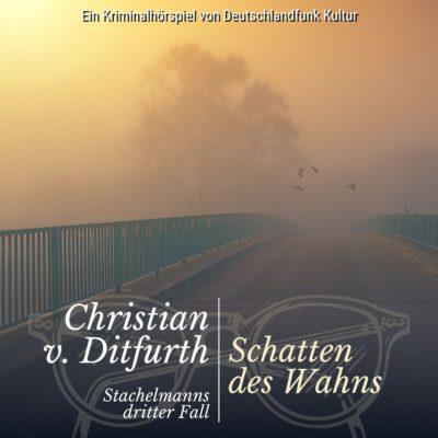 Christian von Ditfurth: Stachelmann ermittelt (03) – Schatten des Wahns