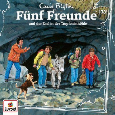 Fünf Freunde (133) – und der Esel in der Tropfsteinhöhle