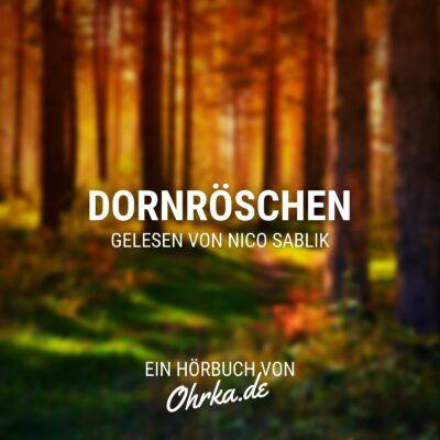 Brüder Grimm – Dornröschen